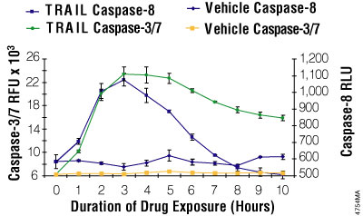 Multiplexing luminescent caspase-8 and fluorescent caspase-3/7 assays.