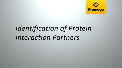 Identification of Protein Interaction Partners