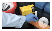 GoTaq qPCR Master Mix Video Thumbnail
